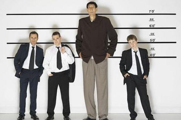 O tamanho do pênis e a relação com a altura