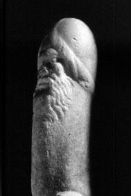A Estética do Pênis